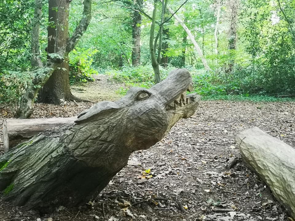 coppetts wood crocodile