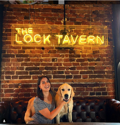 lock tavern dog